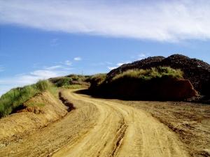 shotgun-trail